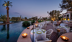 Royal Palm Beachcomber,, Morocco