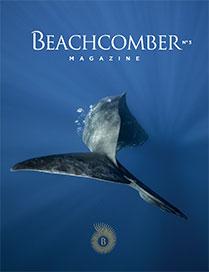 beachcomber magazine 3